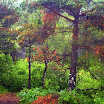 norwegia2012_67.jpg
