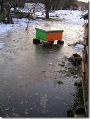 potopa včeliček 20,02,2012 039