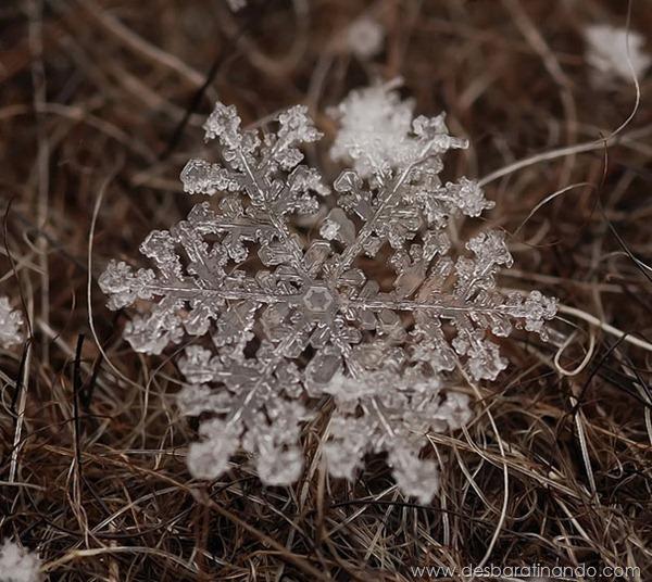 flocos-de-neve-macro-snowflakes-macro-photography-andrew-osokin-desbaratinando (13)