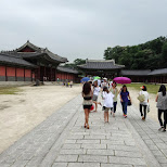 changdeokgung palace Seoul, Korea in Seoul, Seoul Special City, South Korea