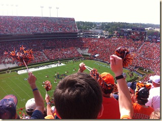 A sea of orange