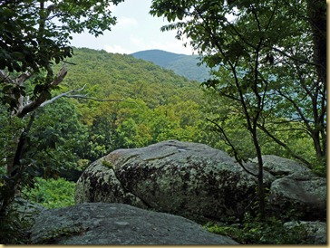 2012-08-02 - Blue Ridge Parkway  - MP 120 - 46 (26)