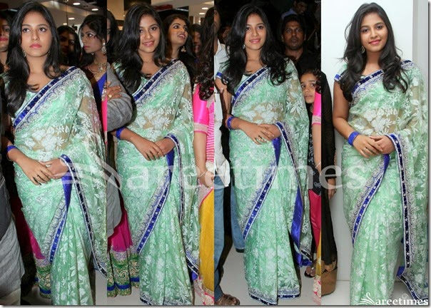 Anjali_Green_Net_Saree