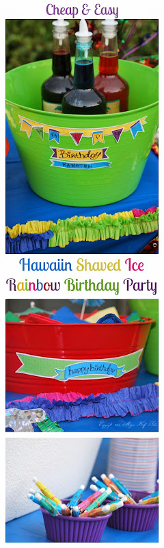 Hawaiin Shaved Ice Birthday Party with Free Printables