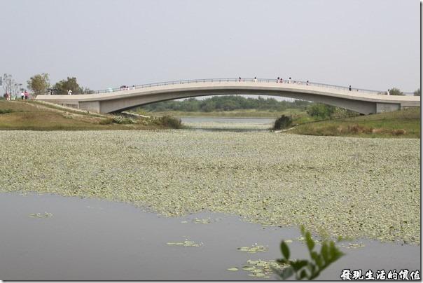 台南-台灣歷史博物館。「牽手橋」前面是有情湖,遠方是忘憂湖。