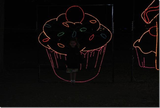 Prairie Lights 134