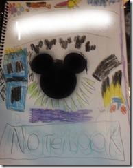 alexandeer diney notebook