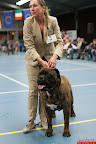 20130510-Bullmastiff-Worldcup-0830.jpg