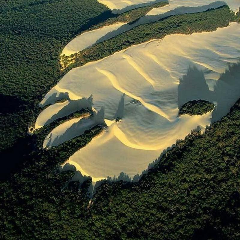 Travelling Sand Dunes of Fraser Island
