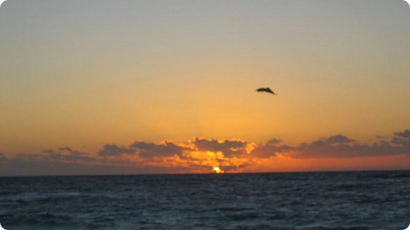 Last sunrise.