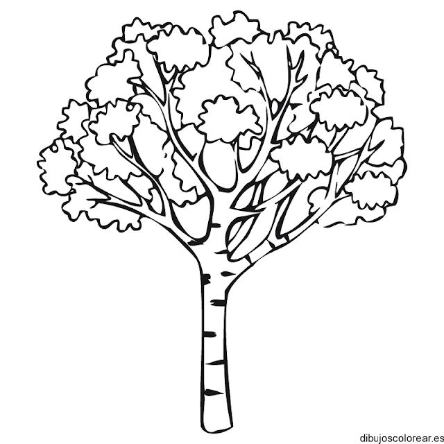 Dibujos del día del árbol - Manualidades Infantiles