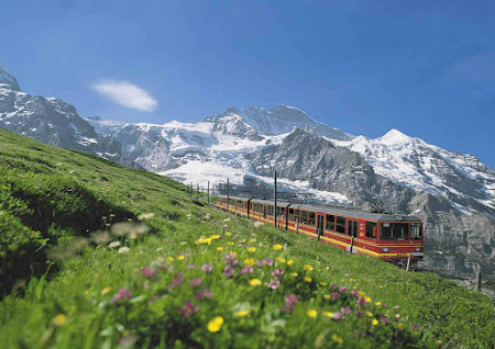 Train: train in Switzerland