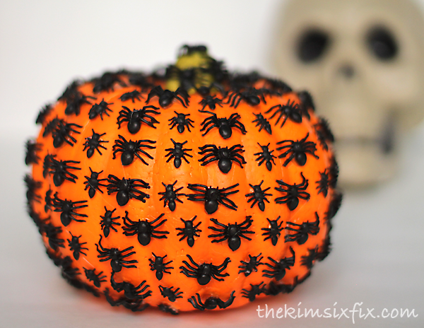 Spider covered pumpkin