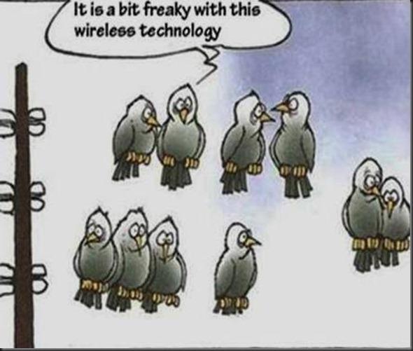 birds in wireless technology