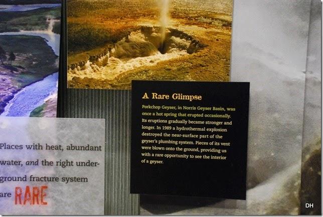 08-08-14 B Yellowstone NP (119)