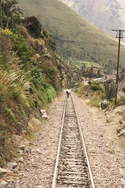 Peru Day 3 082