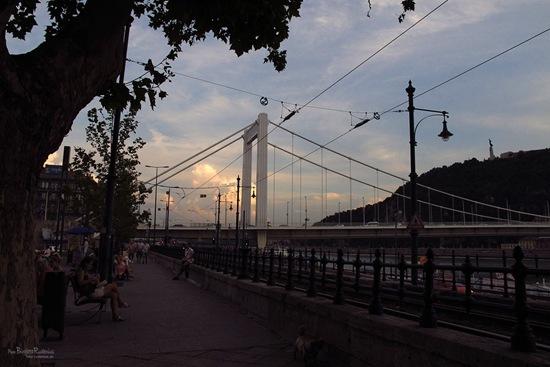 donau_20110901_walk