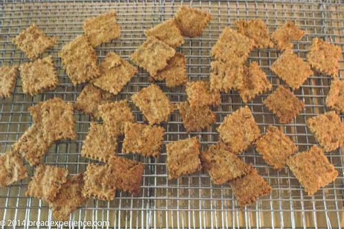 Sprouted wheat crackers made from sprouted grains