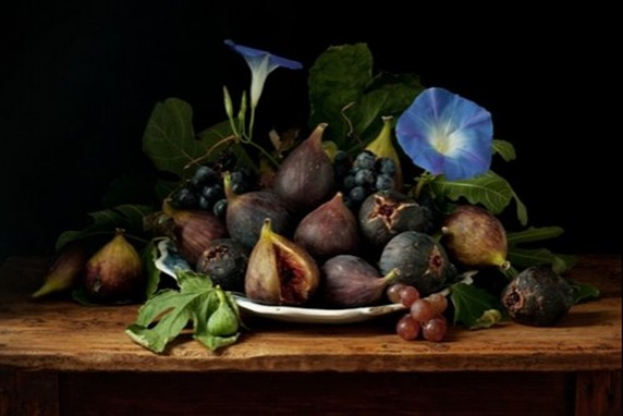 lrg-3774-figs_and_morning_glories