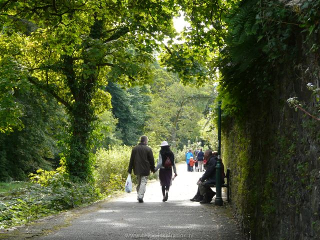 spirituele-reis-dartmoor-engeland-40.JPG