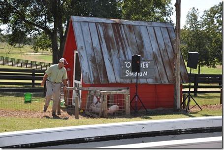southern belle farm 100611 (47)