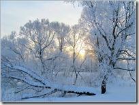 paisajes nevados (100)