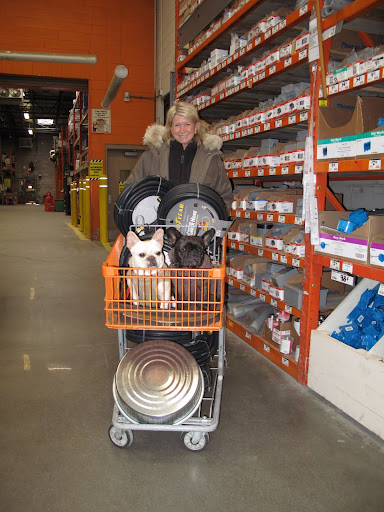 There is a rule that dogs must travel through the store in a cart.  We obliged happily - it was such a great vantage point.  Martha got new hoses for the greenhouses and some flat pans for the geese feed.