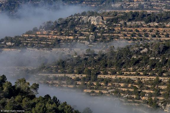 Racó de les PinedesParc Natural del Montsant,Cabacés, Priorat, Tarragona