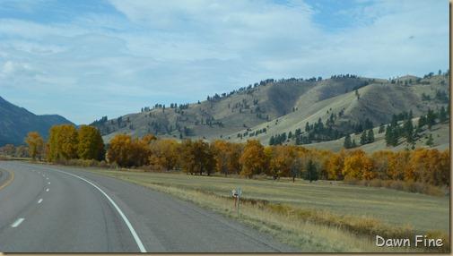 montana west_075