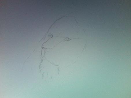 Desenhando leão 1