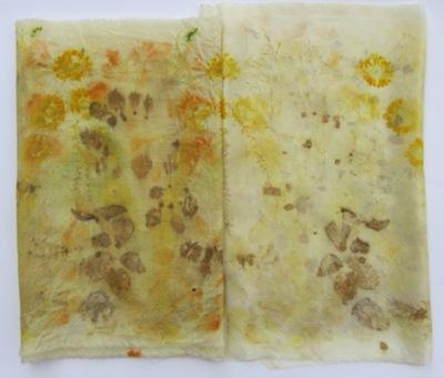 3 Färberkamille, Dahlienblütenblätter, Berberitzenblätter, Brennnesselblätter, Heidekraut