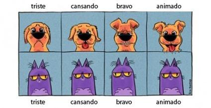 cat-dog-emotions-e1311860477869