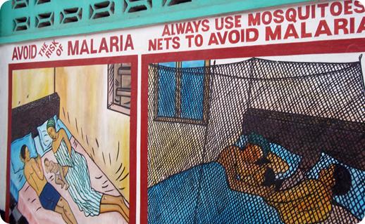 malaria avoid