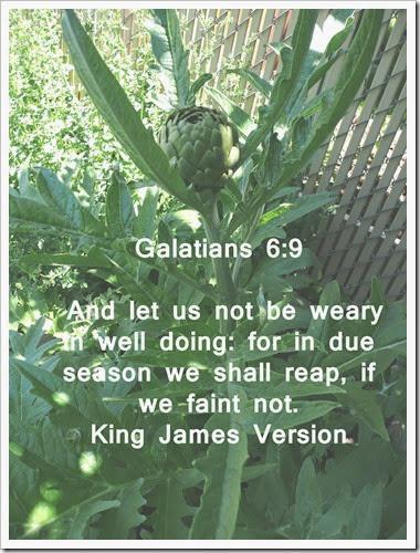 Galations 6 9