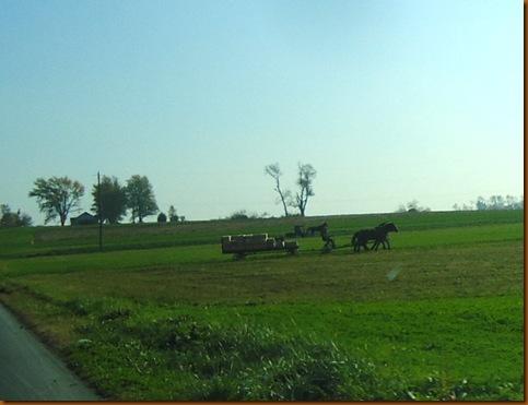 Farmer 4