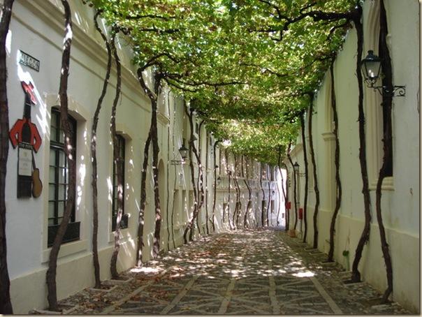 jerez-byass-bodega-old-streets-3