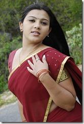 swetha-tamil-actress-hot-
