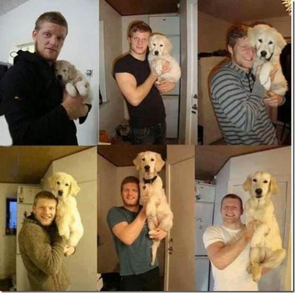 dogs-best-friend-008