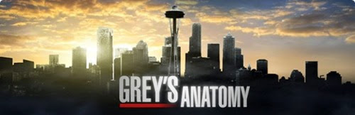 Greys-Anatomy banner