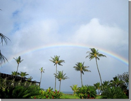 hawaiirainbow_thumb[2]