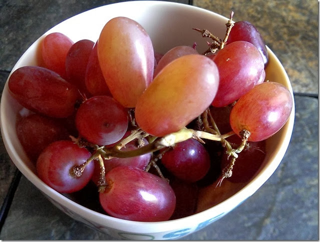 grapes-public-domain-pictures-1 (2277)