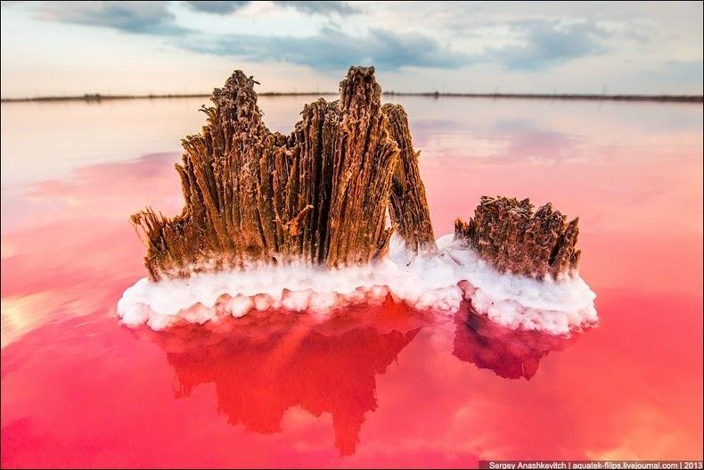 sivash-salt-lagoons-23