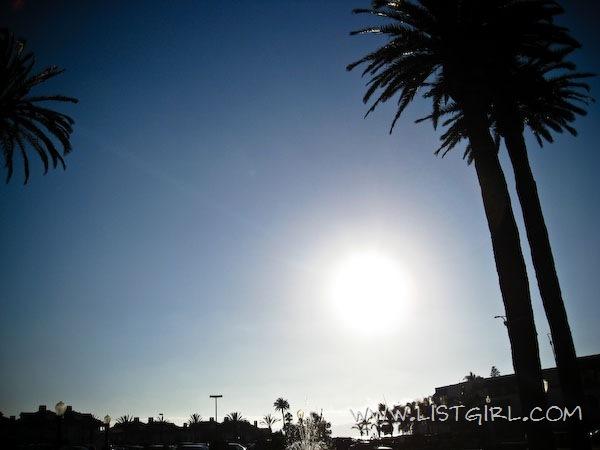 20110817-IMG_7899_600