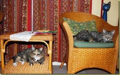 2010-10-16 - Rosa and Felicia 1