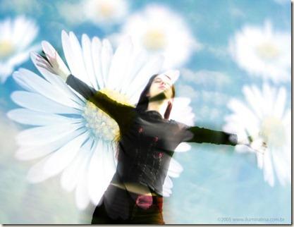 felicidade (2) - Cópia