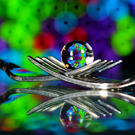 by Dipali S - Artistic Objects Other Objects ( abstract, fork, reflection, straw, artistic, spheres, transparent, refraction )