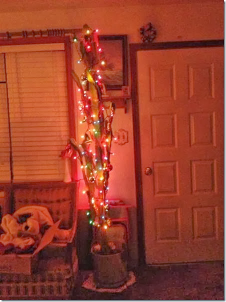 christmas-2013-spirit-33