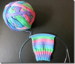 Spring Fever Sock 1