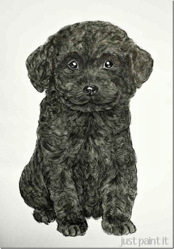 Poodle-Pup-Illustration