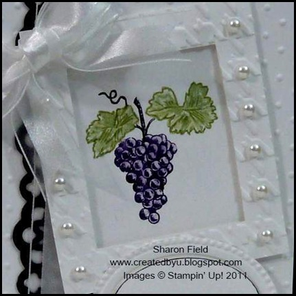 New Products, Natures Pace, Designer Frames, Lace Ribbon Border Punch, Big Shot, Created By You, Sharon Field, Createdbyu, Blogspot, muscial score, embossing, herringbone